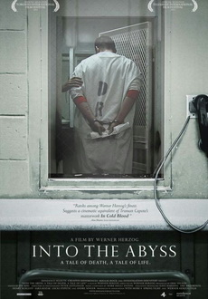 Into the Abyss (2011) BRRip.XviD-FTW
