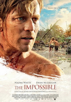 """The Impossible"" (2012) PL.DVDRiP.XViD-PSiG"