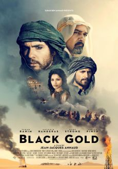 Black Gold (2011) 720p.BluRay.x264.DTS-HDC