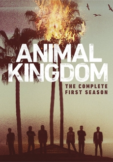 """Animal Kingdom"" [S01] BDRip.x264-REWARD"