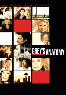 """Grey's Anatomy"" [S06E23-24] HDTV.XviD-2HD"