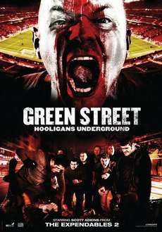 """Green Street 3: Never Back Down"" (2013) PL.BRRiP.x264-PSiG"
