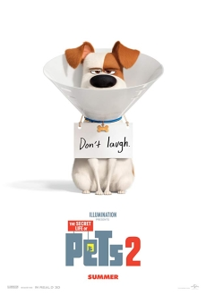 """The Secret Life of Pets 2"" (2019) WEB-DL.XviD.AC3-FGT"