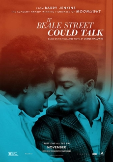 """If Beale Street Could Talk"" (2018) WEB-DL.x264-FGT"