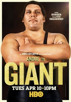 """Andre the Giant"" (2018) DVDRip.x264-PFa"