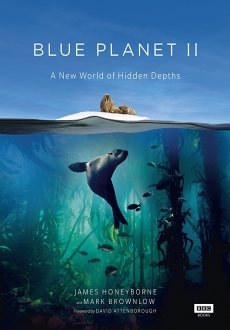 """Blue Planet II"" [S01] BDRip.x264-HAGGiS"