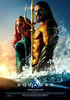 """Aquaman"" (2018) BDRip.x264-SPARKS"