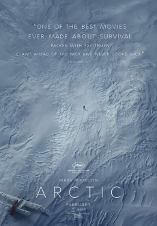 """Arctic"" (2018) BRRip.XviD.AC3-XVID"