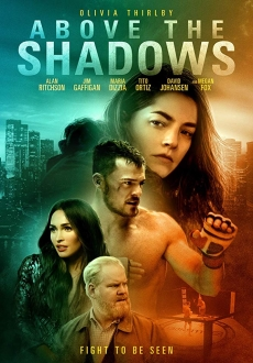 """Above the Shadows"" (2019) WEB-DL.x264-FGT"