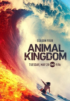 """Animal Kingdom"" [S04E11] WEBRip.x264-TBS"