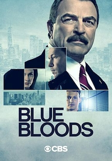 """Blue Bloods"" [S11E10] WEBRip.x264-ION10"