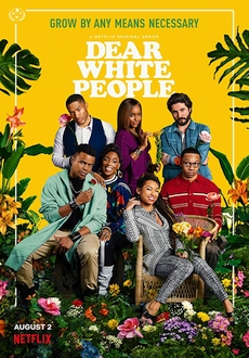 """Dear White People"" [S03] WEBRip.x264-ION10"