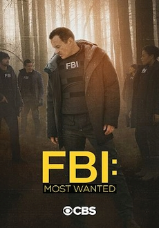 """FBI: Most Wanted"" [S02E02] WEBRip.x264-ION10"