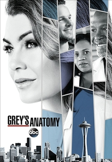 """Grey's Anatomy"" [S14E23] HDTV.x264-KILLERS"