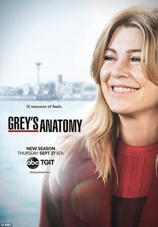 """Grey's Anatomy"" [S15E12] HDTV.x264-KILLERS"