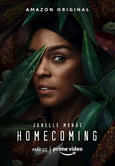 """Homecoming"" [S02] WEBRip.x264-ION10"