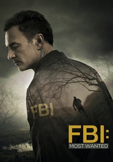 """FBI: Most Wanted"" [S01E14] HDTV.x264-KILLERS"