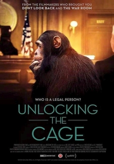 """Unlocking the Cage"" (2016) LiMiTED.DVDRip.x264-LPD"