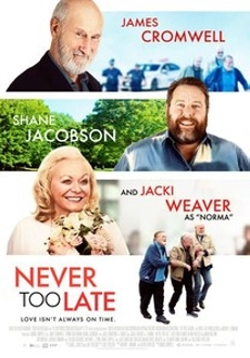 """Never Too Late"" (2020) WEBRip.x264-ION10"